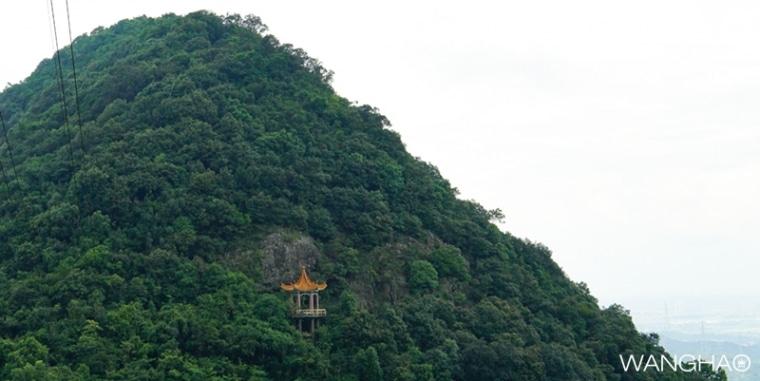 《城迹之樟木头观音山森林公园》