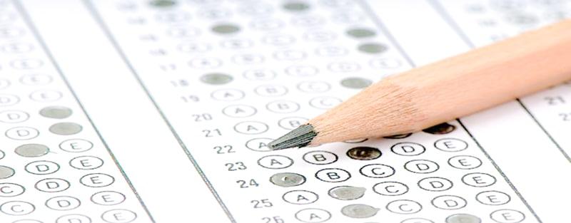 期中考试总结