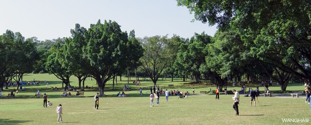 《城迹之东莞植物园》