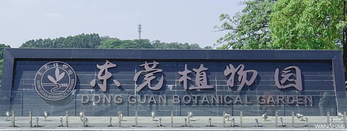城迹之东莞植物园