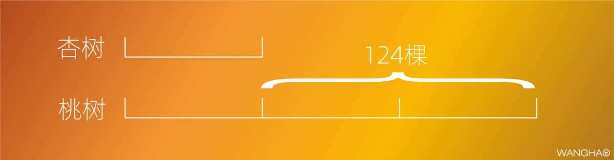小学最常见的21个数学思维问题